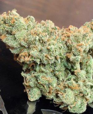 jack-herer-marijuana-strain-2