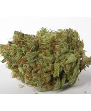 Buy Candyland marijuana online | Candyland marijuana for sale | Candyland marijuana