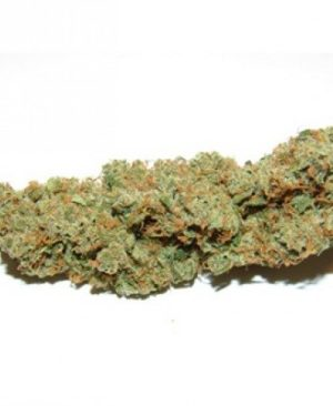 Buy Afghani Hawaiian online | Afghani Hawaiian for sale | Afghani Hawaii